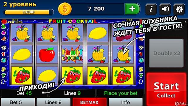 Организация интернет казино