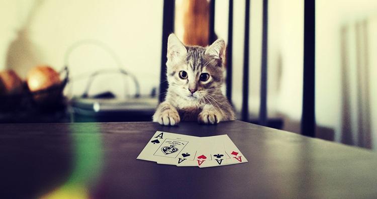 Карточные игры для двоих